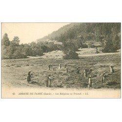 carte postale ancienne 73 ABBAYE DE TAMIE. Les Moines au Travail