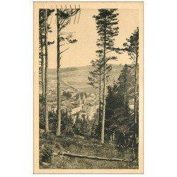 carte postale ancienne 07 LA LOUVESC. A travers les Pins 1938