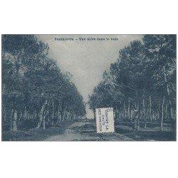 carte postale ancienne 56 PENTHIEVRE. Une Allée dans le Bois. Carte bleutée et petit collage