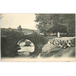 carte postale ancienne 40 DAX. Vieux Pont et Gardeuse d'Oies