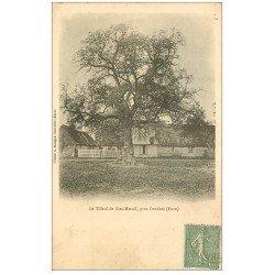 carte postale ancienne 27 SEEZ-MESNIL. Le Tilleul vers 1904