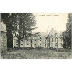 carte postale ancienne 41 BAILLOU. Le Château