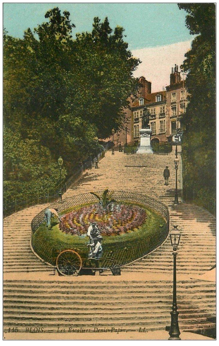 carte postale ancienne 41 BLOIS. Escalier Denis-Pain avec Jardiniers
