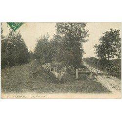 carte postale ancienne 41 CHAMBORD. Sous-Bois
