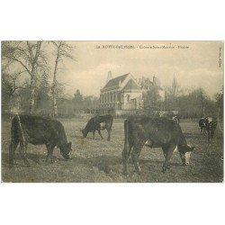 carte postale ancienne 41 LAMOTTE-BEUVRON. Colonie Saint-Maurice 1910