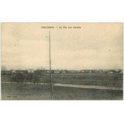 carte postale ancienne 41 SALBRIS. Le Pré aux Canards 1918