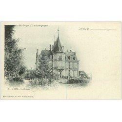 carte postale ancienne 51 AVIZE. Le Château 18