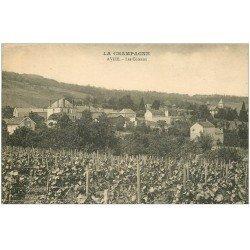 carte postale ancienne 51 AVIZE. Les Coteaux. Vignes et raisins
