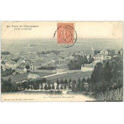 carte postale ancienne 51 AVIZE. Vue 1906. Plissure