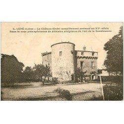 carte postale ancienne 42 LUPE. Le Château 1931