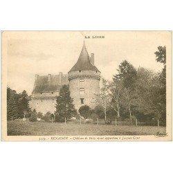 carte postale ancienne 42 RENAISON. Château de Boisy