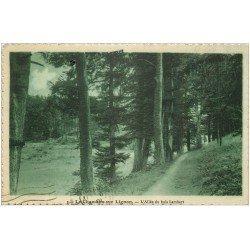 carte postale ancienne 43 LE CHAMBON-SUR-LIGNON. Allée du Bois Lambert 1932