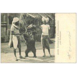 carte postale ancienne 75 PARIS 16. Les Malabares dresseurs d'Ours. Jardin Zoologique d'Acclimatation vers 1900