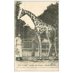 carte postale ancienne PARIS 05. Jardin des Plantes. Girafe