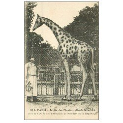 PARIS 05. Jardin des Plantes. Girafe
