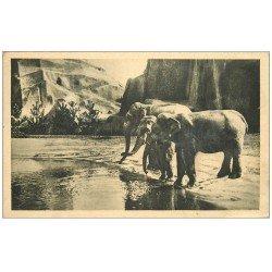 carte postale ancienne PARIS 12. Bois Vincennes. Eléphants au Zoo