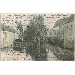 carte postale ancienne 10 LES RICEYS. Les Bords de la Laigne 1903
