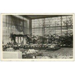 PARIS EXPOSITION INTERNATIONALE 1937. Pavillon Belgique (dentelée)