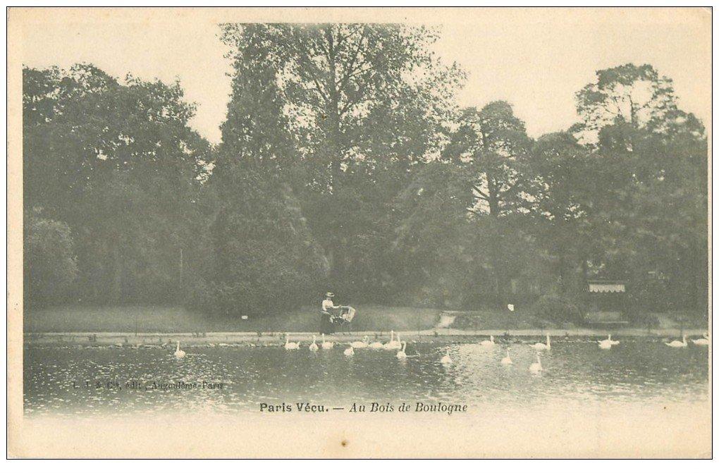 carte postale ancienne PARIS VECU. Cygnes Lac du Bois de Boulogne