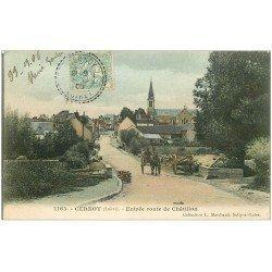 carte postale ancienne 45 CERNOY. Entrée Route de Châtillon 1906