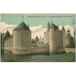 carte postale ancienne 45 CHILLEURS-AUX-BOIS. Château Chamerolles
