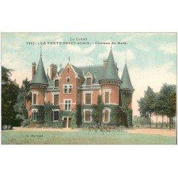 carte postale ancienne 45 LA FERTE-SAINT-AUBIN. Le Château du Ruth