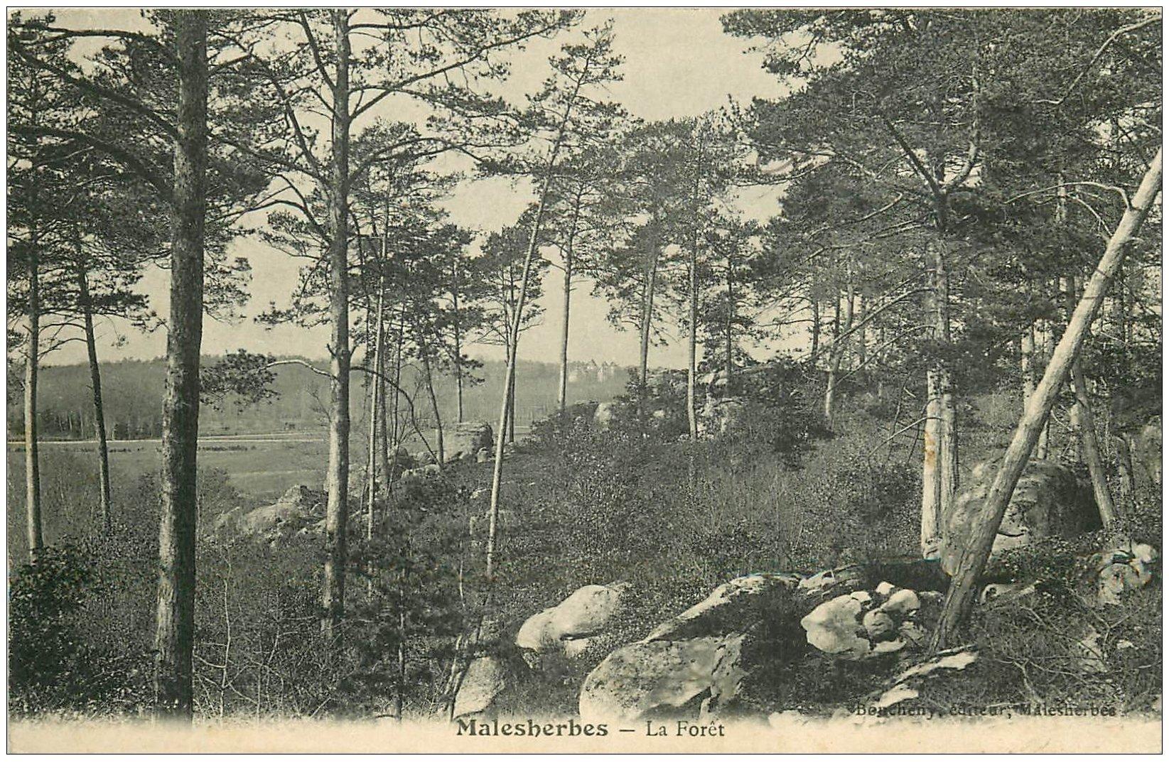 carte postale ancienne 45 MALESHERBES. La Forêt