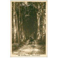 carte postale ancienne 45 PITHIVIERS. Attelage Avenue de Solvius 1936