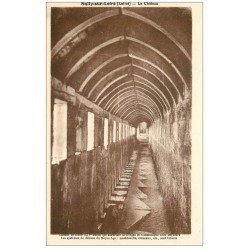 carte postale ancienne 45 SULLY-SUR-LOIRE. Chemin de Ronde