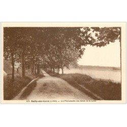 carte postale ancienne 45 SULLY-SUR-LOIRE. Les Promenades
