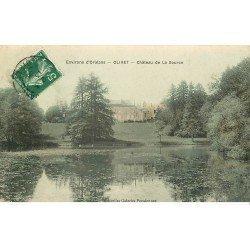 carte postale ancienne 45 OLIVET. Château de la Source 1908