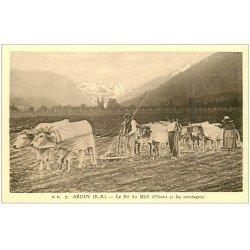carte postale ancienne 64 ARUDY. Cultivateurs dans les Champs. Pic du Midi d'Ossau