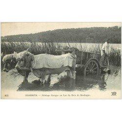 carte postale ancienne 64 BIARRITZ. Attelage Boeufs basques Lac du Bois de Boulogne