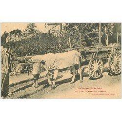 carte postale ancienne 64 PAU. Attelage Béarnais de Boeuf porteurs de Bois