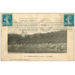 carte postale ancienne 47 CASTELJALOUX. Le Plantey 1926. Pâtre et Moutons