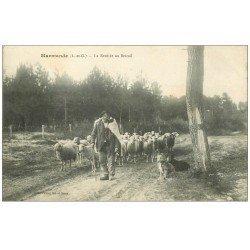 carte postale ancienne 47 MARMANDE. La Rentrée au Bercail 1913. Pâtre et Moutons