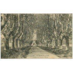 carte postale ancienne 47 VILLENEUVE-SUR-LOT. Allée des Platanes à Eysses 1922