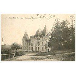 carte postale ancienne 49 CHAMPTOCE. Château de Vauboisseau 1904