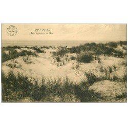 carte postale ancienne 59 BRAY-DUNES. Les Dunes et la Mer 1915