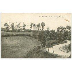 carte postale ancienne 59 CASSEL. Moulins à vent Route de la Gare