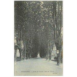 carte postale ancienne 50 AVRANCHES. Jardin Evêché Allée Tilleuls