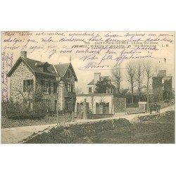 carte postale ancienne 50 SAINT-PAIR-SUR-MER. Chalets Rue Sainte-Anne 1908