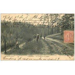 carte postale ancienne 52 CHAUMONT. La Vallée de la Suize 1905