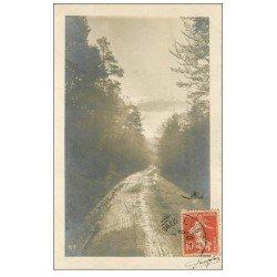 carte postale ancienne 54 LUNEVILLE. Une Allée dans la Forêt 1908 Style carte photo