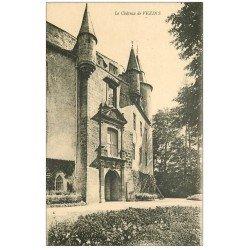 carte postale ancienne 12 Le Château de VEZINS