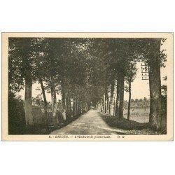 carte postale ancienne 57 DIEUZE. L'Halbuterie promenade 1938