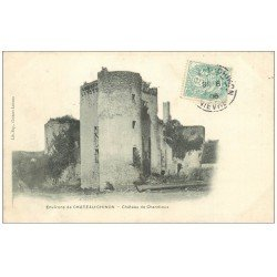 carte postale ancienne 58 CHATEAU DE CHANDIOUX 1906