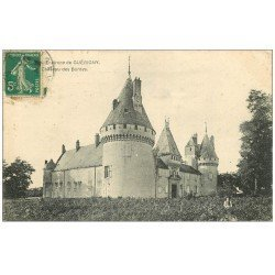 carte postale ancienne 58 CHATEAU DES BORDES 1911 avec Enfant