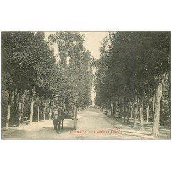 carte postale ancienne 58 COSNE-SUR-LOIRE. Attelage Allée des Tilleuls 1913