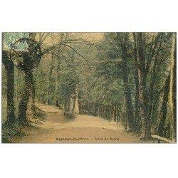 carte postale ancienne 61 BAGNOLES-DE-L'ORNE. Allée du Dante 1907. Superbe Carte Toilée
